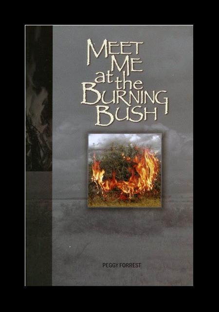 meet me at the book burning
